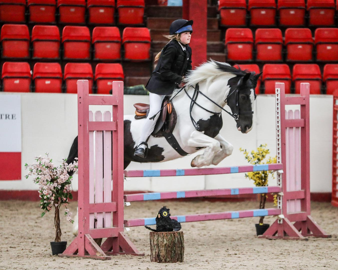Large Indoor Arena Greenlands Equestrian Centre