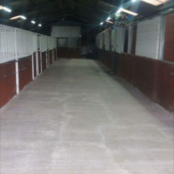 overnight stables
